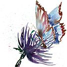 Watercolor Butterfly on Purple Thistle Flower by scratchmade