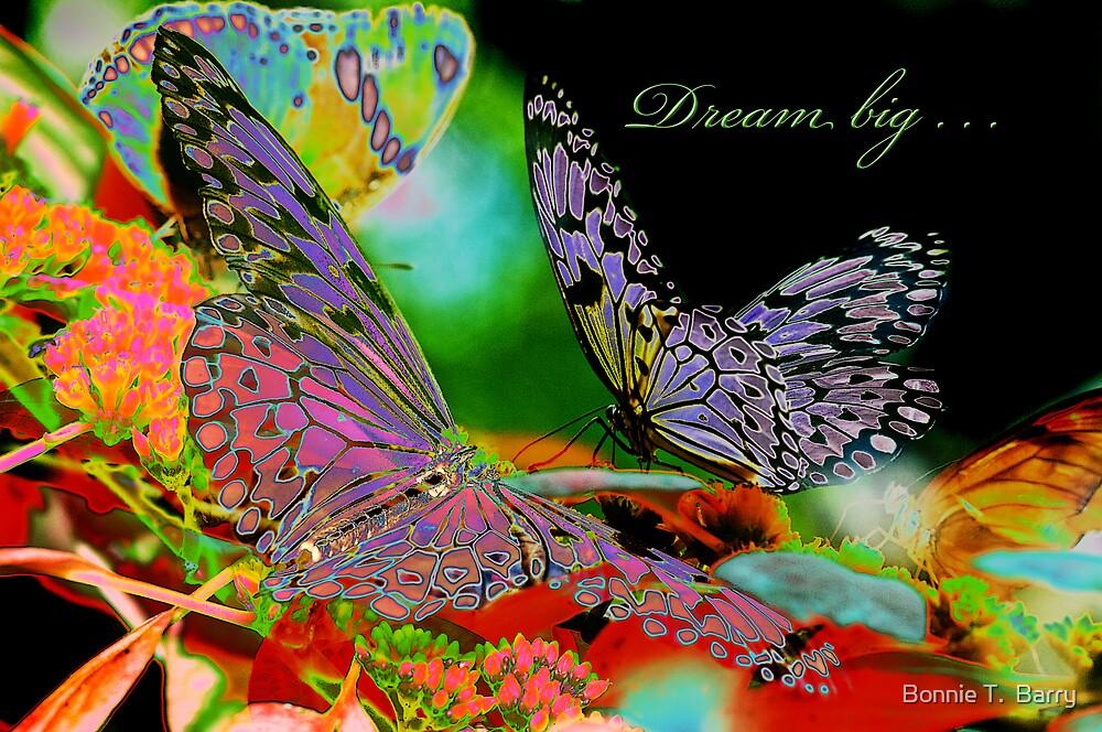 Dream Big by Bonnie T.  Barry