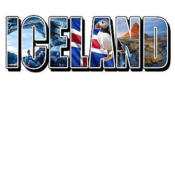 Iceland Souvenir Vacation T Shirt by techman516