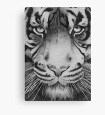 Tiger. Canvas Print