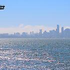 SF Bay by Laura Puglia