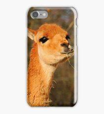 Vicuna Two iPhone Case/Skin