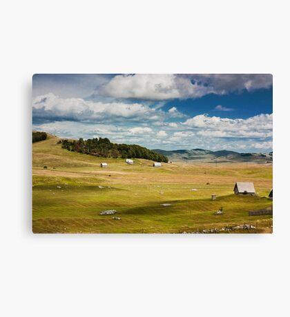 Fields of piece Canvas Print