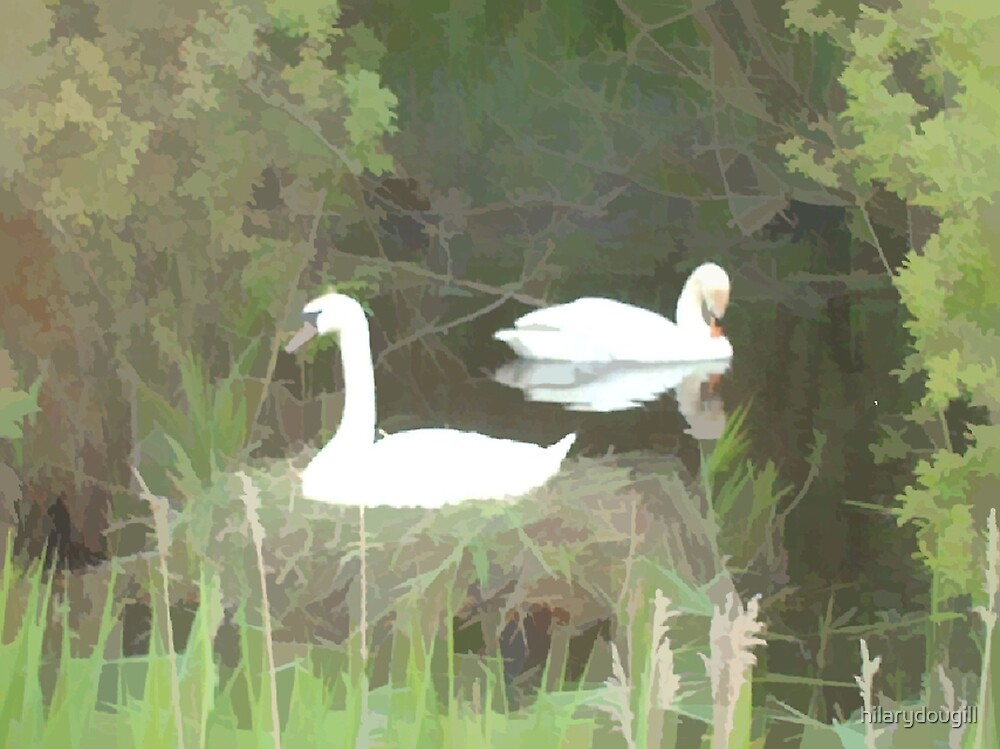 Abstract of swans by hilarydougill