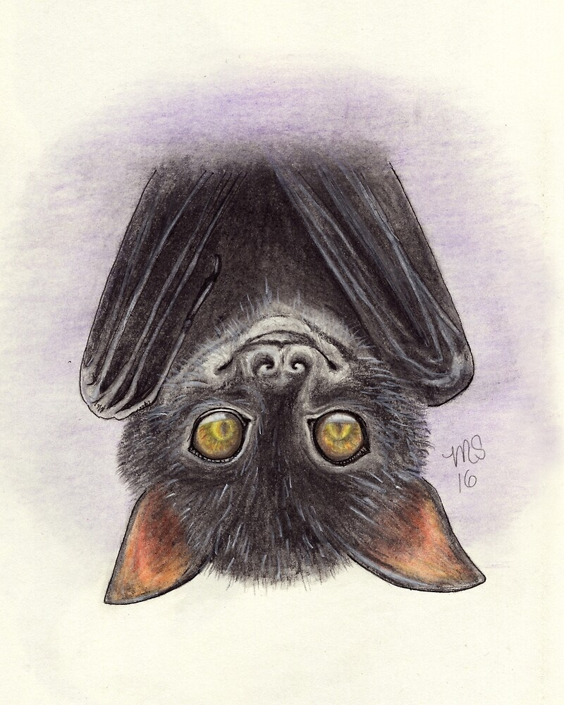 Bat by PixlPixi