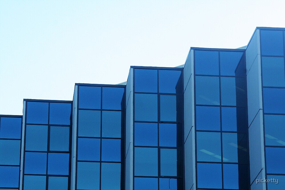 structure blue by picketty