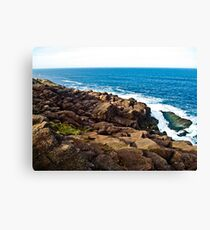 Newfoundland Coastline Canvas Print