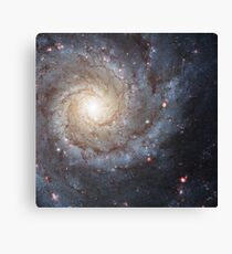 Messier Galaxy Canvas Print