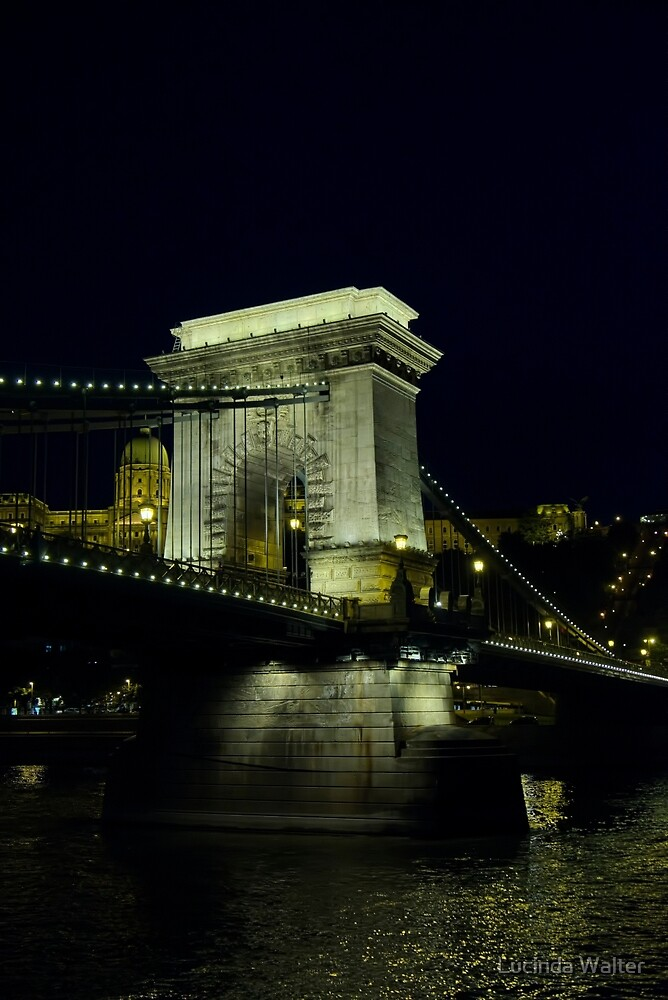 Night view of The Széchenyi Chain Bridge by Lucinda Walter