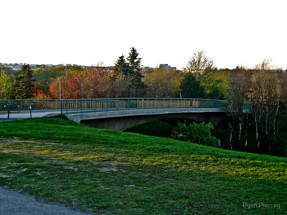 Bowering Park Bridge by Ryan Piercey