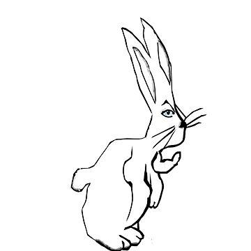 Follow the White Rabbit by happykenz