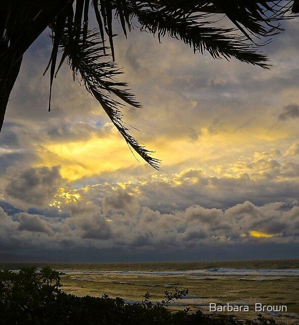 Stormy Skies in Paradise by Barbara  Brown