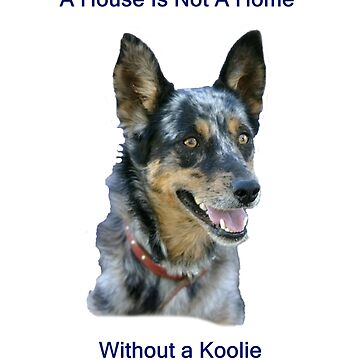 A House is not a home without a Koolie by KoolieClubAust