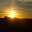 Dawset Sunset by Chris Wilson