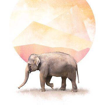 Elephant by GavinScott