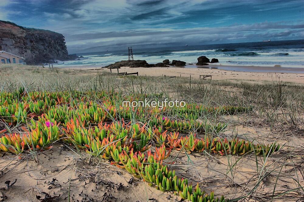 Redhead Beach NSW Australia by monkeyfoto