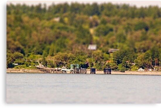 Vashon Island Ferry Pier by Shannon Beauford