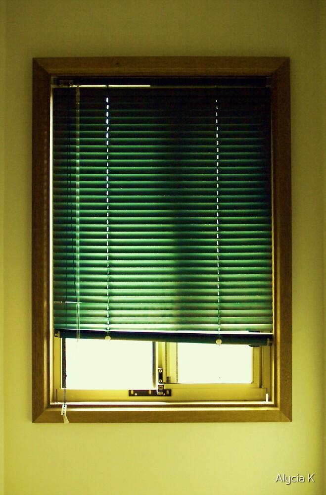 Window by Alycia K