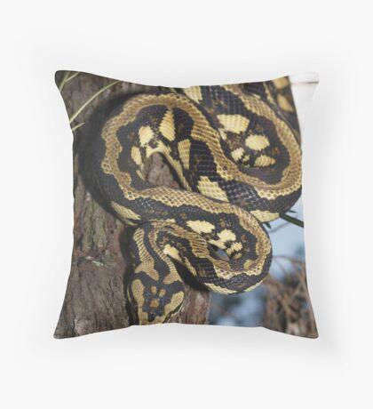 Palmerston Jungle Carpet Python Throw Pillow
