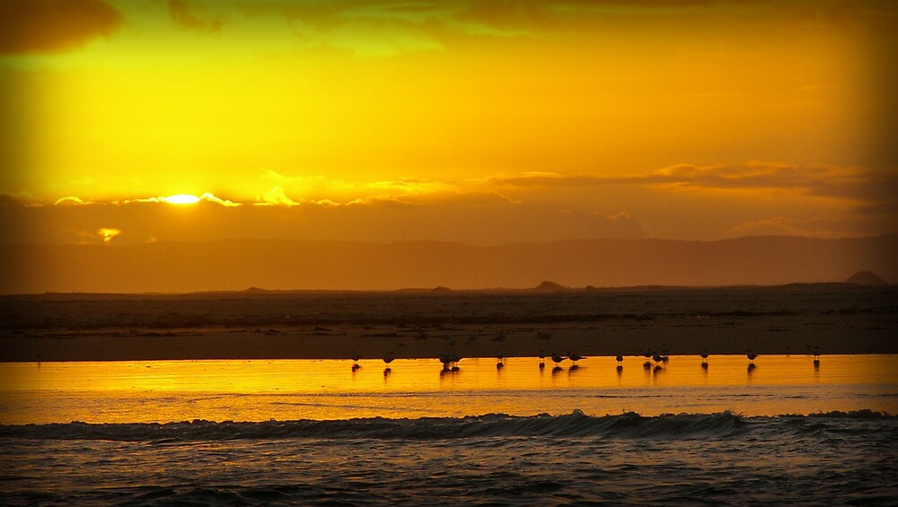 Shallow Inlet Sunset by Leigh  Parkin