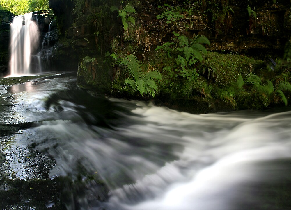 Go with the flow by Anthony Thomas