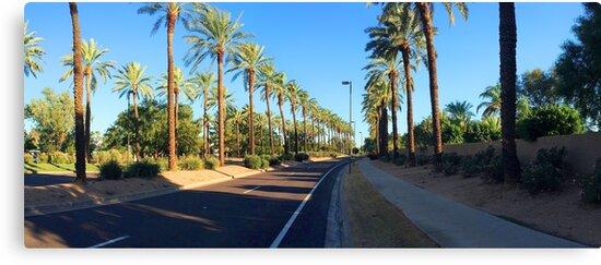 USA (Arizona) - Scottsdale (McCormick Ranch) by dpursoo83