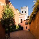 Quintessential Spain - Colorful Crenelations in Barrio Santa Cruz Seville by Georgia Mizuleva