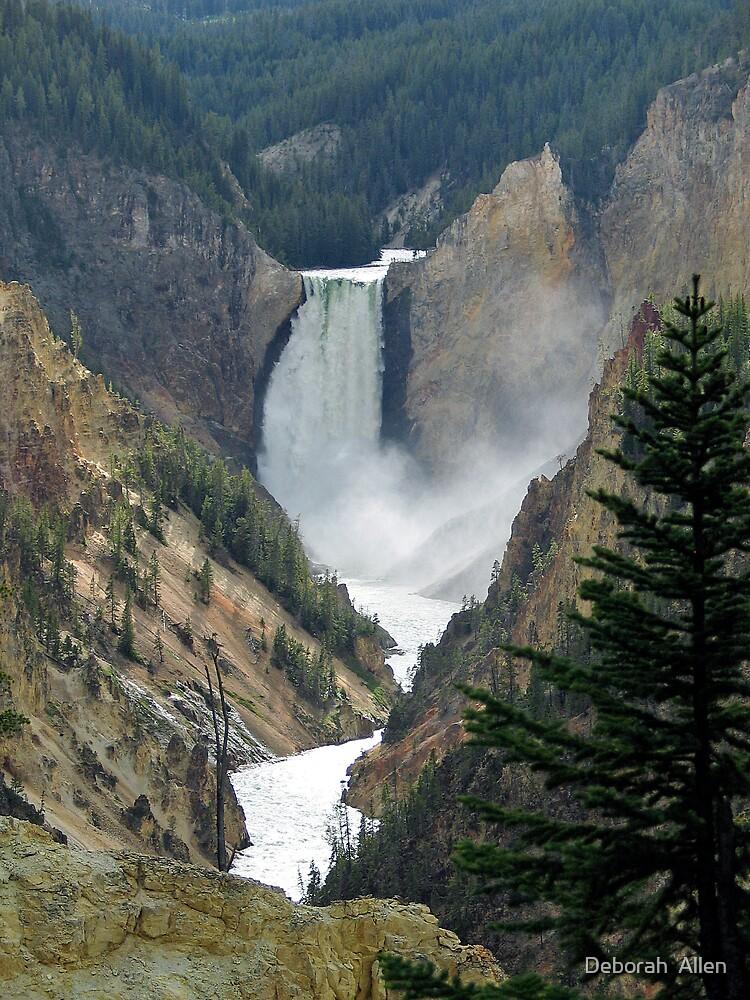 Waterfalls in Yellowstone National Park by Deborah  Allen