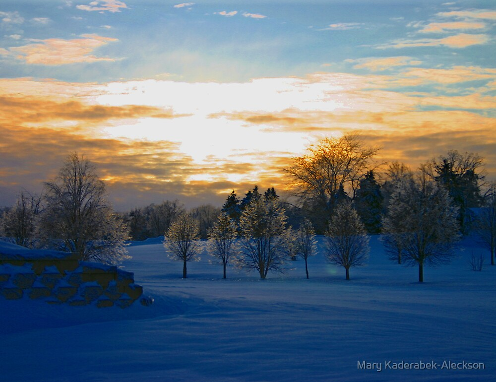 Winter 2008 Sunset by Mary Kaderabek-Aleckson