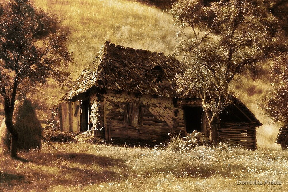 Country life by Dominika Aniola