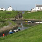 61 - SEATON SLUICE HARBOUR (D.E. 2008) by BLYTHPHOTO