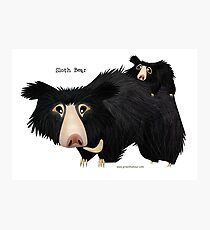 Sloth Bear mother with cub Photographic Print