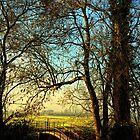 Evening walk, Bungay by Simon Duckworth