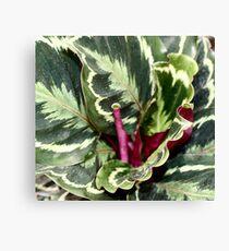 Unique Flora Canvas Print