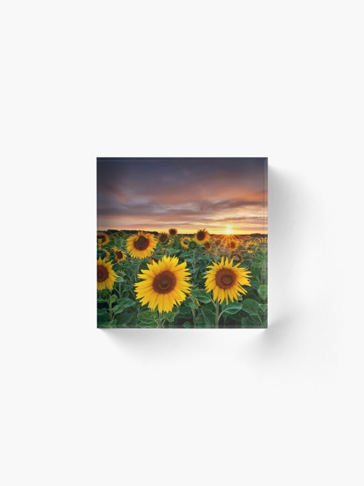 Alternate view of Here comes the Summer Acrylic Block