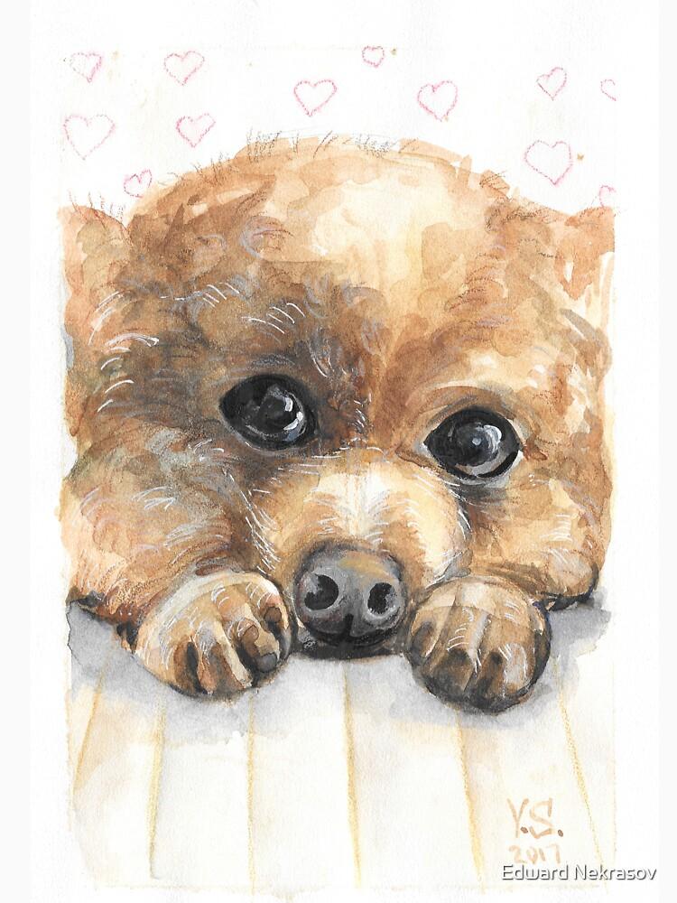 Little dog by Sadykova