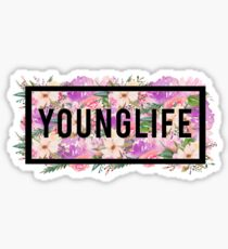 Younglife Box of Flowers Sticker