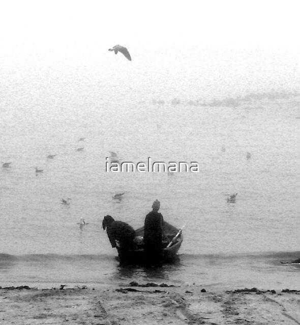 The Fog by iamelmana