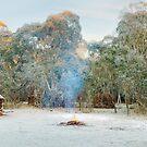 Frosty Moroka Hut, Alpine National Park, Victoria, Australia by Michael Boniwell