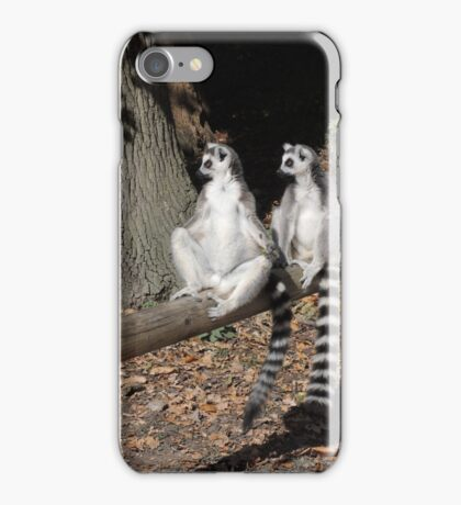 Who's Driving This Log? iPhone Case/Skin