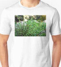 Ferns at Badger's Holt T-Shirt