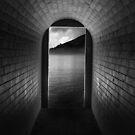 Tunnel Vision by Shannan Edwards