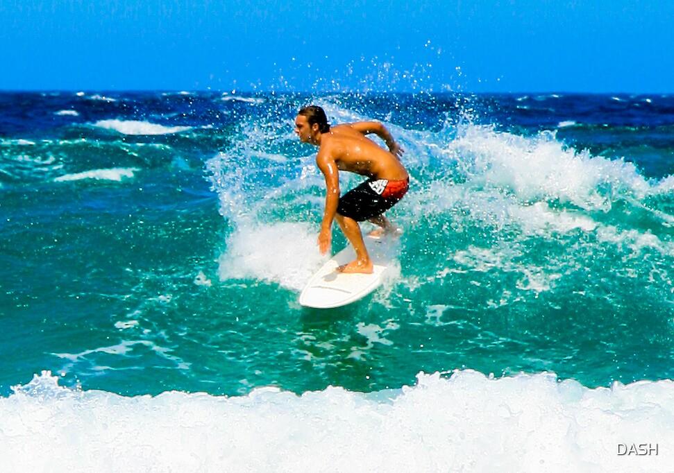 Surf by DASH