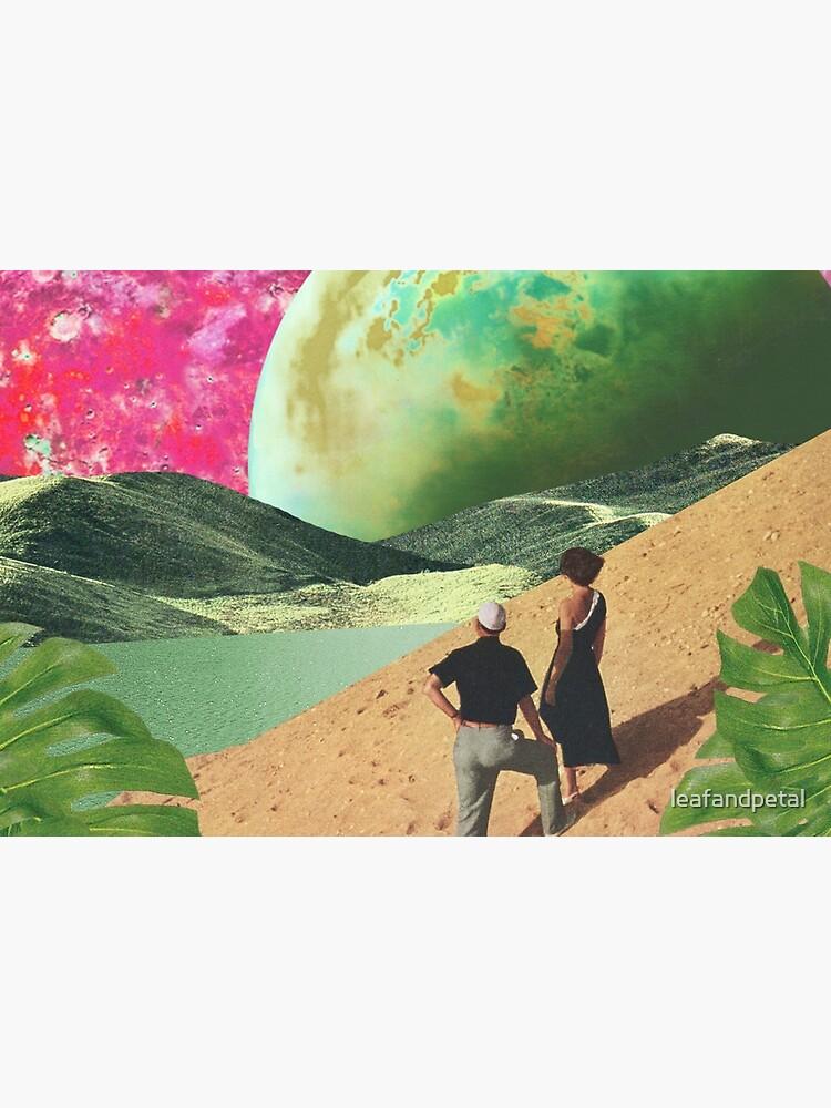 Oasis by leafandpetal