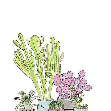 Cactus by OliviaJames
