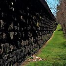 Northcote Wall. by Jeanette Varcoe.