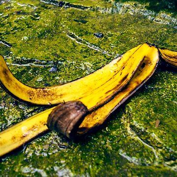 Banana Peel  by danafazz