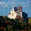 Lake Annecy. France by hans p olsen