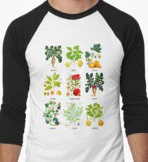 Botanical Vegetables Men's Baseball ¾ T-Shirt