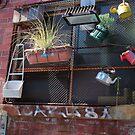 Urban garden by Jeanette Varcoe.
